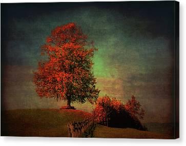 Majestic Linden Berry Tree Canvas Print by Susanne Van Hulst