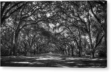 Majestic Live Oaks Wormsloe Plantation Art Canvas Print by Reid Callaway