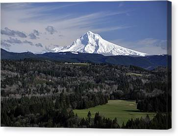 Canvas Print featuring the photograph Majestic Mt Hood by Jim Walls PhotoArtist