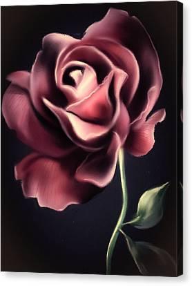 Majestic Rose Canvas Print