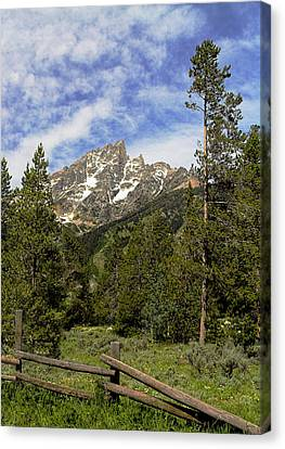 Canvas Print featuring the photograph Majestic Splendor by Dan Wells