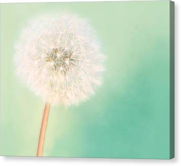 Make A Wish - Large Canvas Print by Amy Tyler