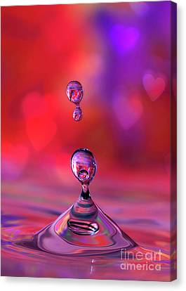 Canvas Print featuring the photograph Making A Splash by Darren Fisher