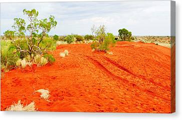 Making Tracks In The Dunes - Red Centre Australia Canvas Print