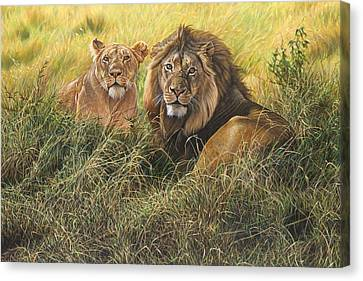 Male And Female Lion Canvas Print