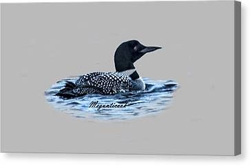 Male Mating Common Loon Canvas Print by Daniel Hebard