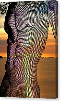 Male Nature Nude Canvas Print by Mark Ashkenazi