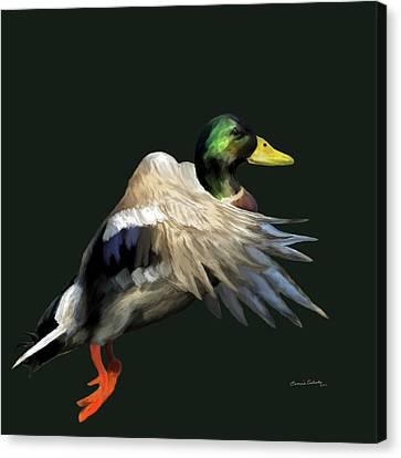 Mallard Freehand Canvas Print by Ernie Echols