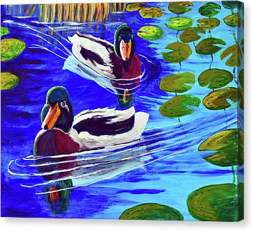Mallards In The Pads Canvas Print by Bob Crawford