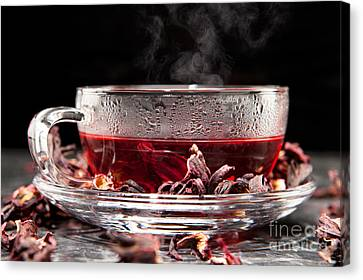Mallow Tea Canvas Print by Wolfgang Steiner