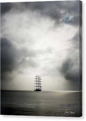 Maltese Falcon Canvas Print by Sabine Stetson