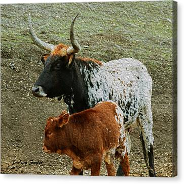 Mama Longhorn And Baby Painting Canvas Print by Barbara Snyder