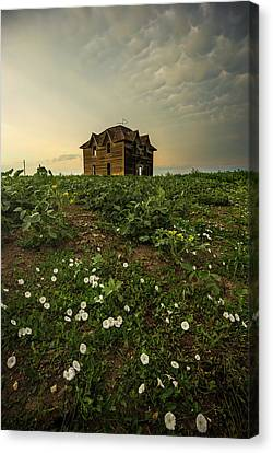 Abandoned Houses Canvas Print - Mammatus And Flowers  by Aaron J Groen