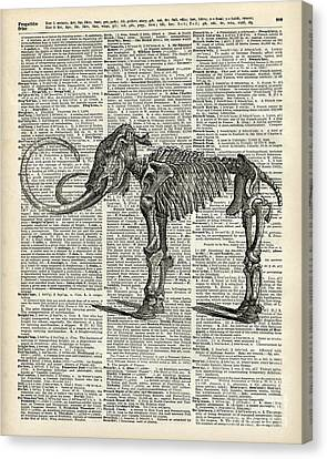 Mammoth Elephant Bones Over A Antique Dictionary Book Page Canvas Print