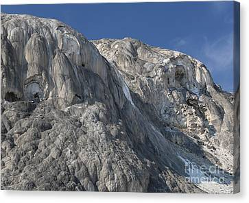 Canvas Print featuring the photograph Mammoth Hot Springs by Robert Pearson