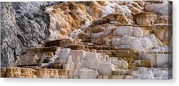 Mammoth Hot Springs Terraces Yellowstone Canvas Print by Steve Gadomski
