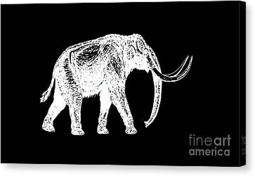 Mammoth White Ink Tee Canvas Print by Edward Fielding