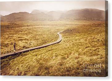Man On Expedition Along Cradle Mountain Boardwalk Canvas Print by Jorgo Photography - Wall Art Gallery