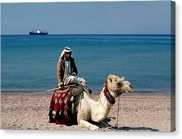 Man With Camel At Red Sea Canvas Print