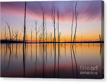 Manasquan Reservoir Long Exposure Canvas Print by Michael Ver Sprill