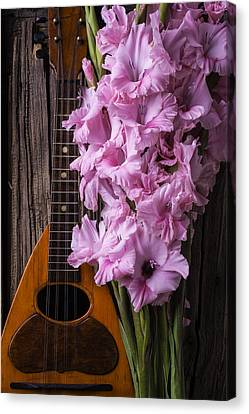 Mandolin And Glads Canvas Print by Garry Gay