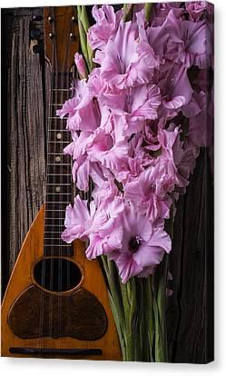 Mandolin And Glads Canvas Print by Garry Gay