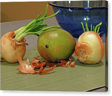 Mango With Two Onions Canvas Print