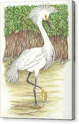 Mangrove Fishin' Canvas Print by Sue Bonnar