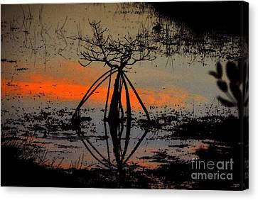 Mangrove Silhouette Canvas Print by David Lee Thompson