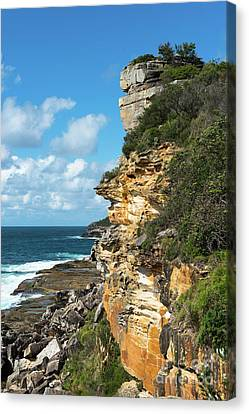 Manley Coastline  Canvas Print