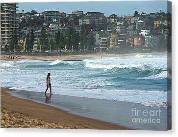 Manley Canvas Print - Manly Beach In Atmospheric Evening Light by Andrew Michael
