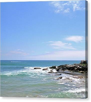 Manly Beach No. 267 Canvas Print by Sandy Taylor