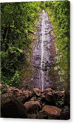Manoa Waterfall Canvas Print by Marcia Colelli