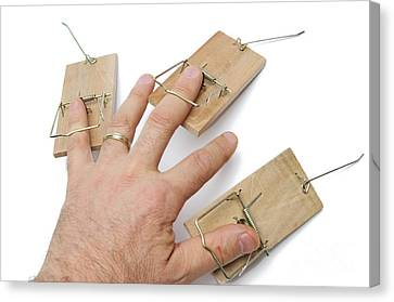 Man's Hand With Three Mousetraps On Fingers Canvas Print by Sami Sarkis