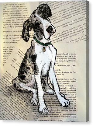 Mantle Merle Great Dane Puppy Nora Canvas Print