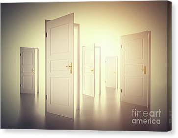 Many Ways To Choose From, Open Doors. Decision Making Canvas Print by Michal Bednarek