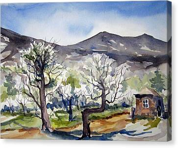 Canvas Print featuring the painting Manzanar Orchard by Pat Crowther