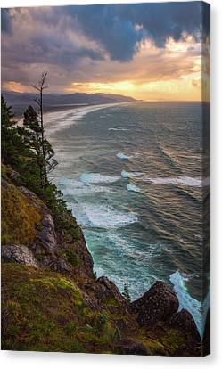 Canvas Print featuring the photograph Manzanita Sun by Darren White