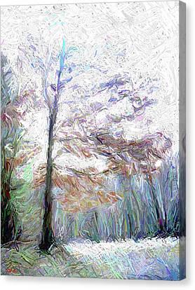 Maple In Light Canvas Print by Gerhardt Isringhaus