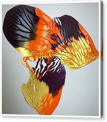 Maple Canvas Print by Jaba Misra