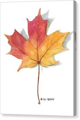 Maple Leaf Canvas Print