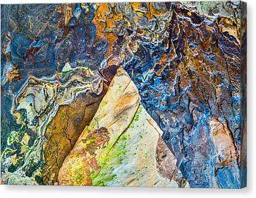 Maps Of Other Planets 4 Canvas Print