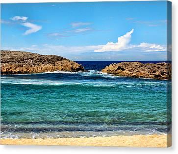Mar Chiquita North Coast Puerto Rico Canvas Print by Frank Feliciano
