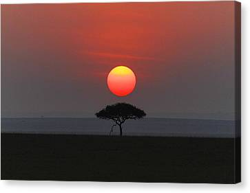 Mara Sunset Canvas Print by Christa Niederer