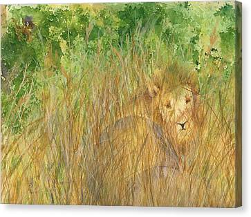 Canvas Print featuring the painting Mara The Lioness by Vicki  Housel