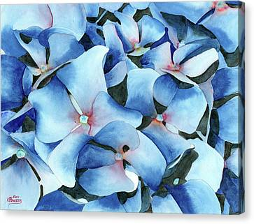 Marathon Hydrangeas Canvas Print