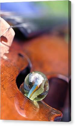 Marble On Violin Canvas Print by Dagmar Batyahav