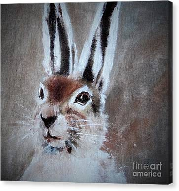 March Hare Canvas Print - March Hare In Colour by Angela Cartner