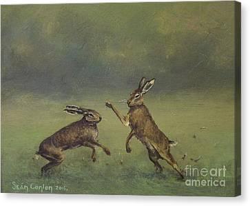 March Hare Canvas Print - March Hares by Sean Conlon