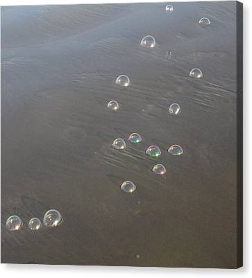 March Of The Bubbles Canvas Print by Marie Neder